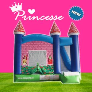 Location château Princesse